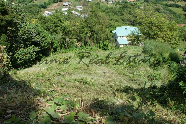 Property For Sale: Land at Harmony Hall Ribishi RefICRL122