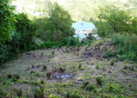 Property For Sale: Land at Harmony Hall Ribishi Ref ICRL