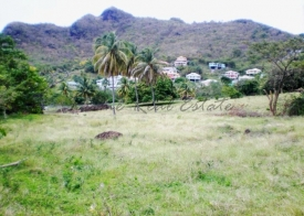 Property For Sale: Two Plots of Land For Sale at Ruthland Vale Layou Ref JDLL