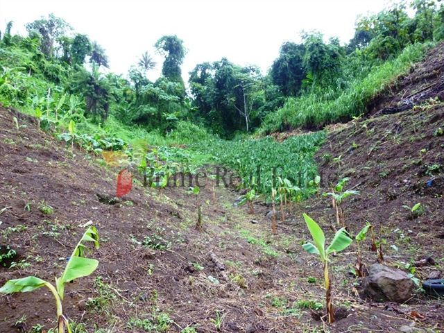 Property For Sale: Agriculture Farming Land For Sale Ref GSCVFL164