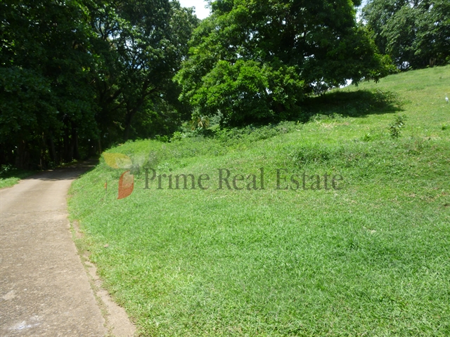 Property For Sale: Lot 1 For Sale Rivulet Enhams RefLCCP264