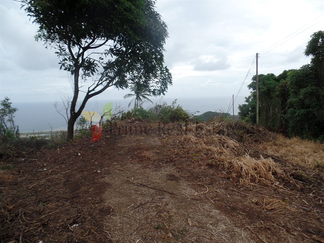Property For Sale: Lands For Sale Akers RefDBAP289