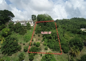 Property For Sale: Land For Sale Golden Vale Ref JGGVP