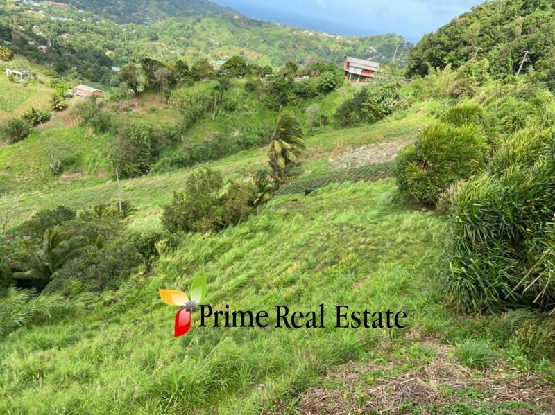 Property For Sale: Belmont Farming lands For Sale Belmont Ref VLTBALP358